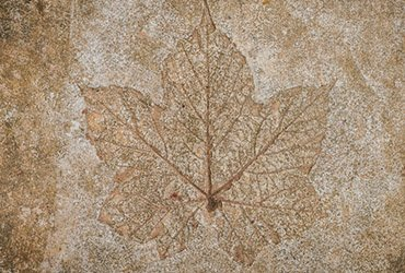 concrete-engraving-concrete-polishing-polished-floor-toronto-gta