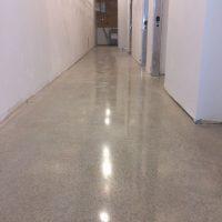 glassy-floors