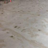 polished-concrete-restaurant-floor